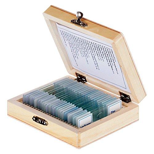 AmScope PS25 Mikrospie Zoologie 25 Stück Lern Experiment Set Dauerpräparate Objektträger mit Holzkasten