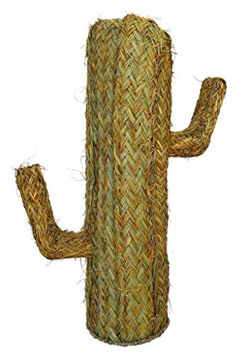 Cactus de Esparto - BicocaWeb (100 cm, 40)