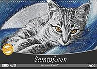 Samtpfoten - Katzen in Pastell (Wandkalender 2022 DIN A3 quer): Ein aufregender Tag im Leben der getigerten Kater Bob und Leo. (Monatskalender, 14 Seiten )