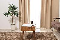 1級遮光カーテン 【13カラー×3サイズ】 2枚組 遮光 ウォッシャブル 遮熱 カーテン 遮熱カーテン 洗える (ライトベージュ, 幅100cm×丈200cm)