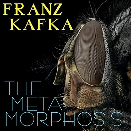 The Metamorphosis cover art