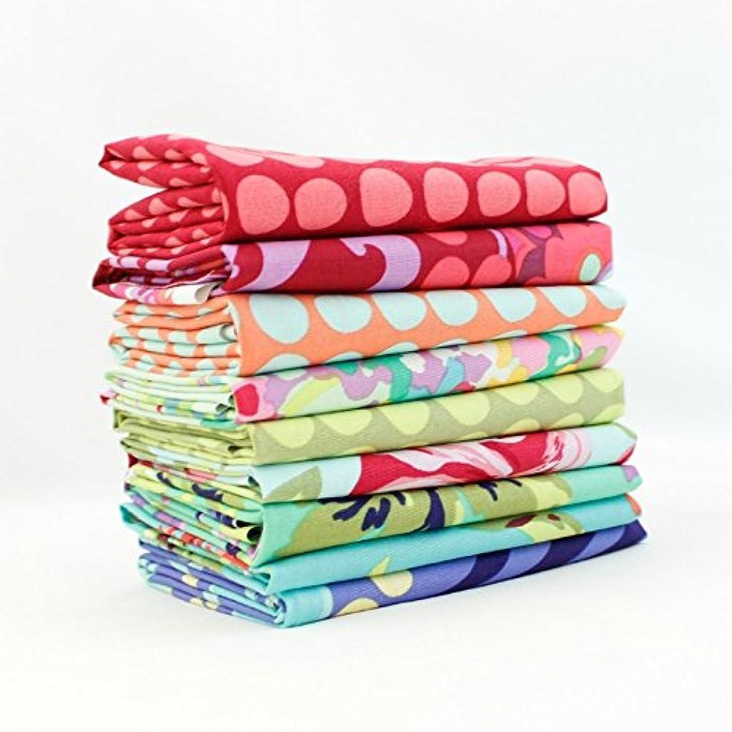 Love Half Yard Bundle (9 pcs) - Amy Butler - Free Spirit 18 x 44 inches (45.72cm x 111.76cm) fabric cuts DIY quilt fabric