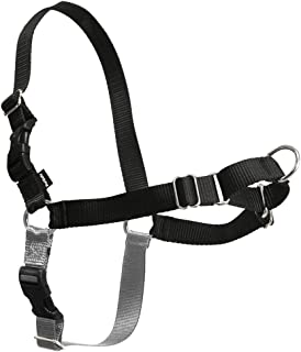 Best easy walk dog harness petco Reviews