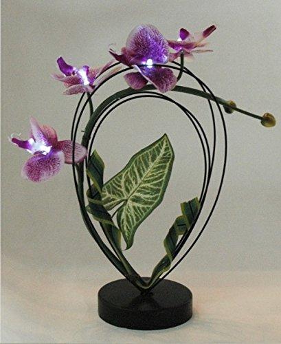 FEERIES ET MERVEILLES ORCHIDÉE Artificielle Violette A LED (HT 33 x 20 cm), Fleur Artificielle Orchidee