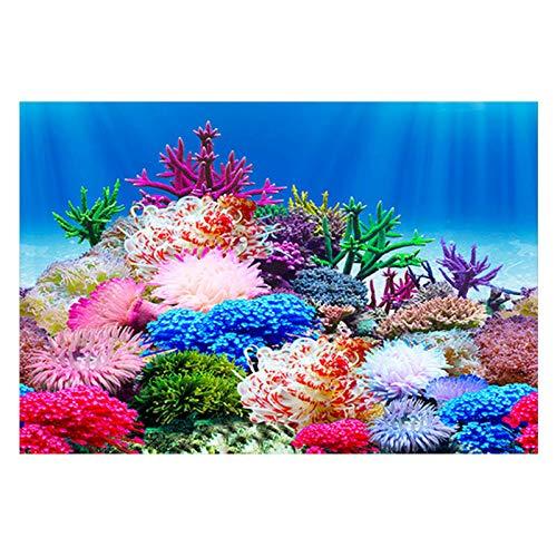 LACKINGONE Aquarium-Hintergrund, doppelseitig, Aquascape Stein