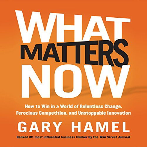 What Matters Now audiobook cover art