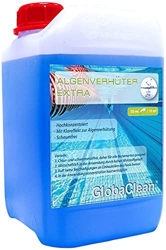 3L - Pool Algenvernichter Plus - Hochkonzentriert & Schaumfrei - Algenverhüter