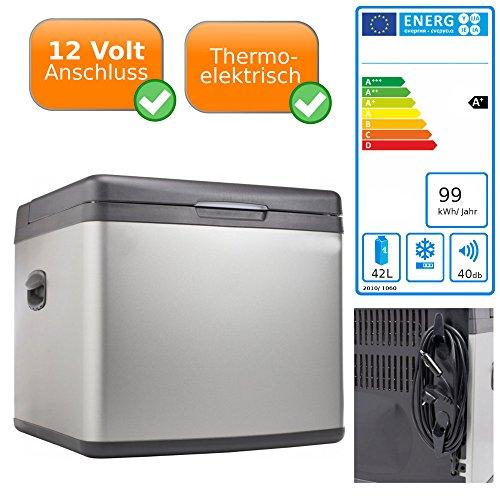 PROFI 12V koelbox | 42L koelbox | 230V AC & 12V DC | personenauto vrachtwagen koelkast BOX