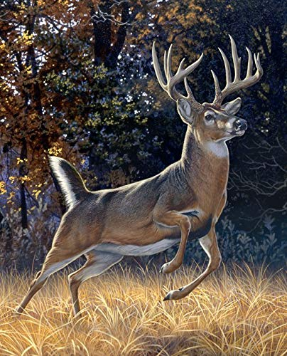 David Textiles 12 Point Buck Deer Startled Ready to Run Cotton Fabric Panel 36 X 44 Inch