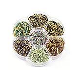 Cadena de diamantes de imitación de colores de 10 yardas con el mismo color inferior y piedras de cristal de diamantes de imitación de cristal que recorta la cadena de copa B1355-Ss6-Set 3-Ss6-1Yard