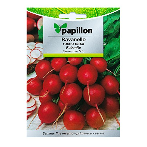 PAPILLON - Semillas Rabano Rojo Temprano (8 gramos)