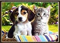 DIY クロスステッチキット、手作り刺繍キット 、11CT 図柄印刷 初心者 ホーム装飾 、壁の装飾 、クリスマス プレゼント, 猫と犬 40X50CM