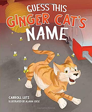 Guess This Ginger Cat's Name