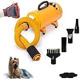 Perro Secador de 4.0 HP 2 Velocidad Ajustable de Temperatura de Calor y estética for Mascotas Perro Secador de Pelo soplador Profesional con 4 Diferentes boquillas LMMS (Color : Yellow)