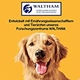 Pedigree Biscrok Hundesnacks 3 köstlichen Geschmacksrichtungen, 6 Packungen (6 x 500 g) - 5