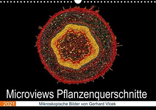 Microviews - Pflanzenquerschnitte (Wandkalender 2021 DIN A3 quer)