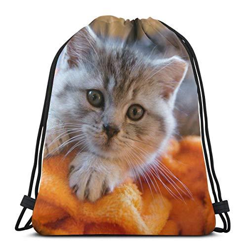 TYSS - Toalla de gatito con cordón para el hombro, diseño de animales domésticos personalizados, bolsa de gimnasio, mochila de viaje, ligera, para hombre y mujer, 42,8 x 35,5 cm