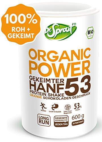 VEGANES Proteinpulver BIO in gekeimter Rohkost-Qualität | SCHOKO Shake 600g | Pflanzliches Eiweißpulver mit Hanf-, Reis-, Erbsen-, Sonnenblumen Eiweiß | VEGAN Protein Pulver OHNE Soja Zucker Weizen