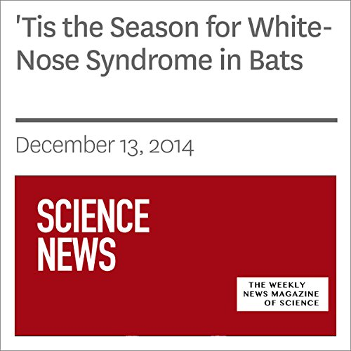 'Tis the Season for White-Nose Syndrome in Bats cover art