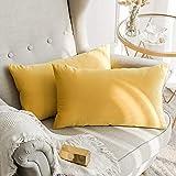 MIULEE Terciopelo Funda de Cojine Funda de Almohada del Sofá Throw Cojín Decoración Almohada Caso de la Cubierta Decorativo para Sala de Estar 30x 50cm 12 x 20 Pulgadas 2 Pieza Amarillo limón