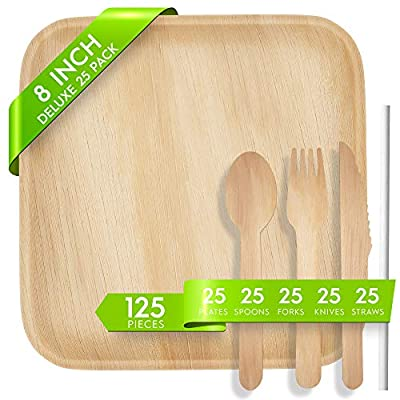 Logical Eco Palm Leaf Plates, Compostable Plates and Utensils Set - 25 Square 8 Inch Biodegradable Plates, Wood Cutlery, Paper Straws, Eco Friendly Disposable Dinnerware Supplies