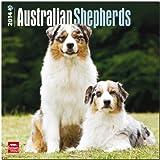 australian shepherd 2014 calendar