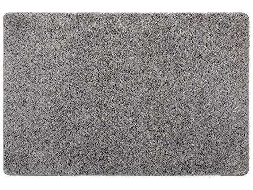 Famibay Mikrofaser Fußmatte Wasserabsorbierende Schmutzfangmatte Eingangsbereich Innen Grau Fußabtreter Waschbar Türmatte Gummimatte rutschfest Teppich Türvorleger Haustür Schmutzmatte 60 x 90