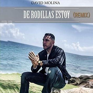 De Rodillas Estoy (Remix)