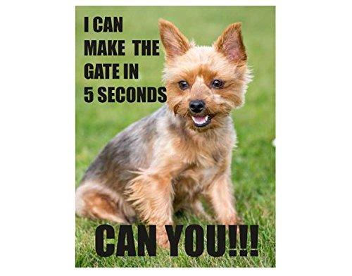 Yorkshire terrier hond Ik kan de poort te maken in 5 seconden kunt u retro shabby chic vintage stijl acryl sleutelhanger sleutelhanger en flesopener