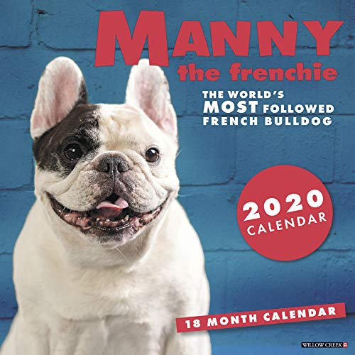 Manny the Frenchie 2020 Wall Calendar (Dog Breed Calendar)