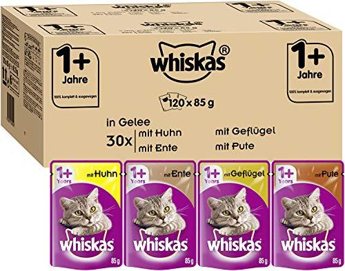 Whiskas 1+ Ragout in Gelee – Zarte, saftige Katzennahrung in verschiedenen Geschmacksrichtungen – Für Katzen ab 12 Monaten