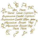 OLYCRAFT 96pcs Zodiac Sign Resin Fillers 2-Style...