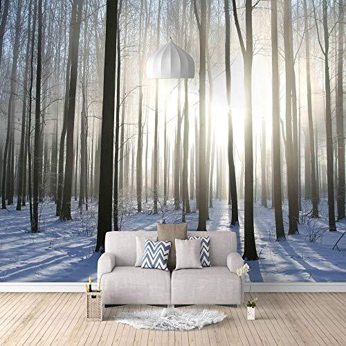 Papel Pintado 3D Murales Bosques soleados Fotográfico Fleece No-Trenzado Moderna Murales Decor de Paredes 300x210 cm - 6 strisce Salón Dormitorio Despacho Pasillo