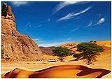 Wallario Poster - In der Wüste Sahara in Premiumqualität,