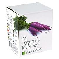 Tout ce dont vous avez besoin pour la culture de ces cinq légumes insolites en un coffret Carottes violettes, choux de Bruxelles rouges, tomates rayées, courgettes jaunes et bettes multicolores 5 variétés de graines, 5 pots de culture, 5 blocs de tou...