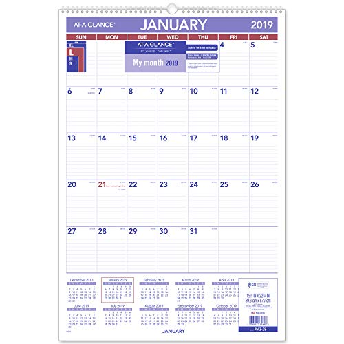 AT-A-GLANCE 2019 Monthly Wall Calendar, 15-1/2 x 22-3/4, Large, Wirebound (PM328)