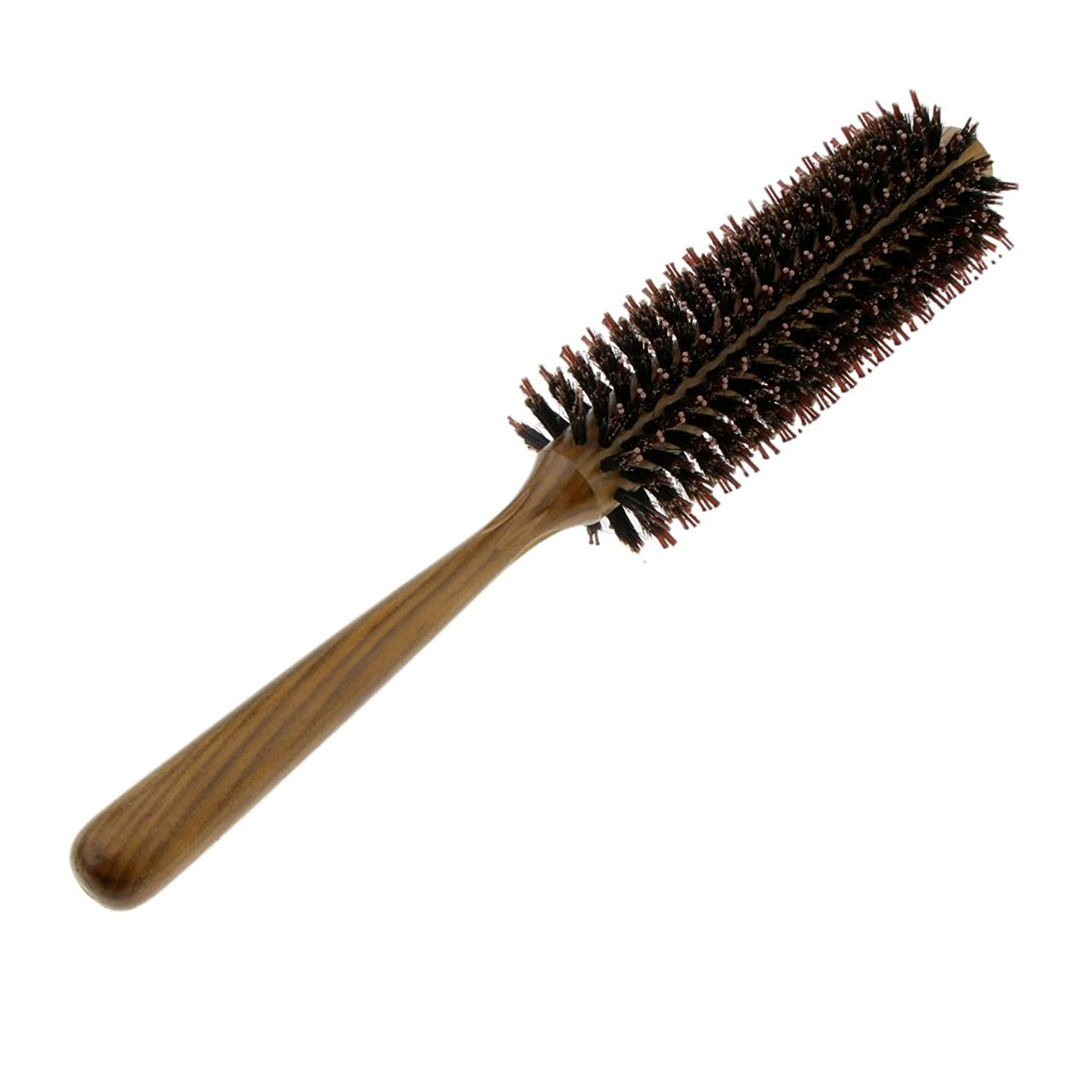焦げ取得潤滑するFenteer ロールブラシ ヘアブラシ コーム ヘアスタイリング 櫛 くし カール 巻き髪 3サイズ選べる - M
