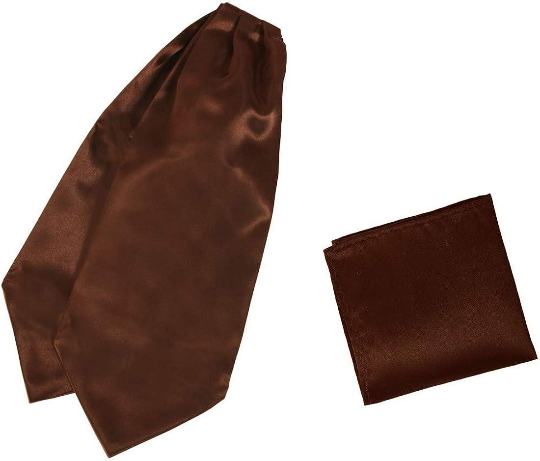Mens Ascot Tie Satin Fabric Cravat Solid Ascot Dan Smith