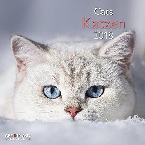 Katzen 2018: Broschürenkalender