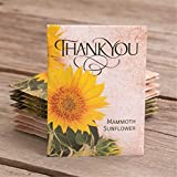 Thank You | 25 Mammoth Sunflower Seed Packet Party Favors | Non GMO | Already Filled | Bulk Pack of 25