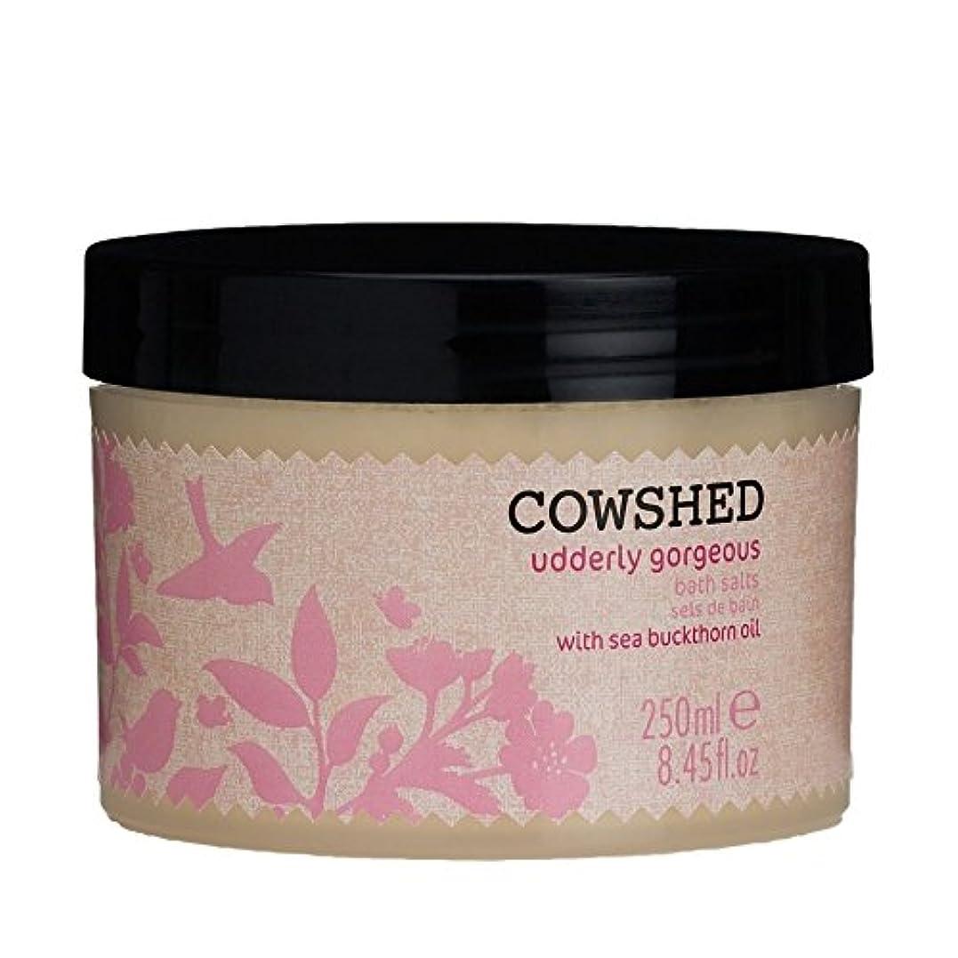 耕す隣接する元に戻すCowshed Udderly Gorgeous Bath Salts 250ml - 250ミリリットル牛舎ゴージャスな入浴剤 [並行輸入品]
