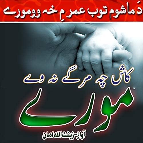 Zeenat Ullah Aman