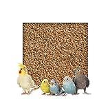 Kieskönig 5 kg Buchenholzgranulat Vogelsand Bodengrund Terrariensand Einstreu Terrariumsand Tiereinstreu Fein 1,0-2,5 mm