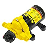 Flow Max 689054 115V Positive Displacement 3-Chamber Fresh Water Pump