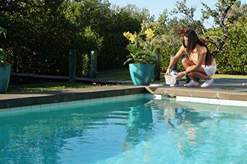 Clorox Pool&Spa Chlorine Stabilizer 4 lb