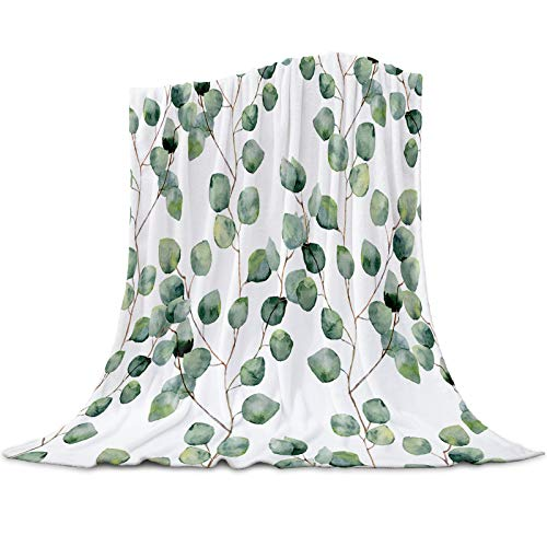 Funy Decor Flannel Fleece Blanket Watercolor Vine Ultra Soft Lightweight Throw Blankets Fresh Green Leaves Warm Cozy Bed Couch for Travel All Reason, 40x50