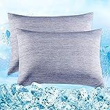 Elegear Funda de Almohada de Refrescantes de 2, Q-MAX 0,4 ARC-Chill Japonés Fibra de Enfriamiento, Funda Protege Almohada Suaves Transpirables con Cremallera Oculta (Azul,40*80cm)