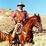 Kit de peinture diamant 5D à faire soi-même Cheval Cowboy du Désert peinture au point de croix, broderie de strass pour décoration murale de maison, cadeau 50x50cm W2755