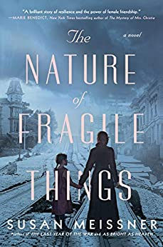 The Nature of Fragile Things by [Susan Meissner]