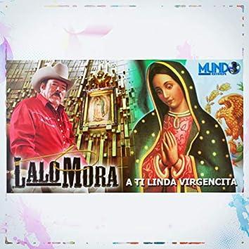 A Ti Linda Virgencita